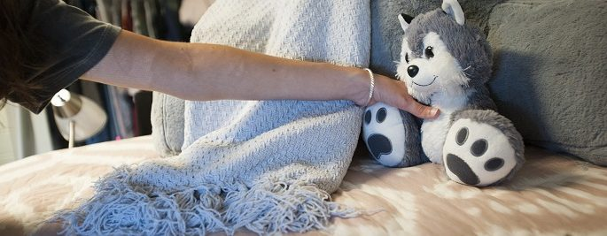 Husky stuffed animal tucked in bed